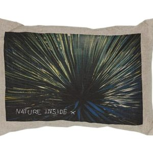 coussin lin lave image nature lledo